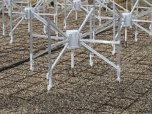 Close-up of MWA antenna and ground grid